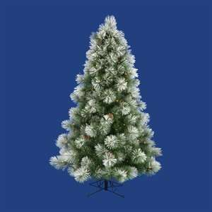 Christmas Tree. Big and Bold Frosted Scotch Pine Full Pre lit Tree