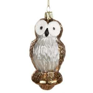 Kurt Adler 5 Inch Glass Owl Ornament, 2 Piece