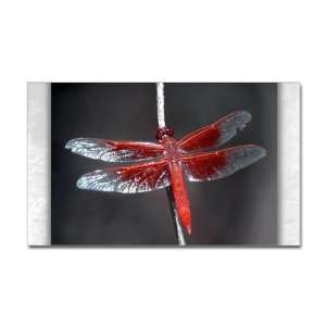 Sticker (Rectangle) Red Flame Dragonfly